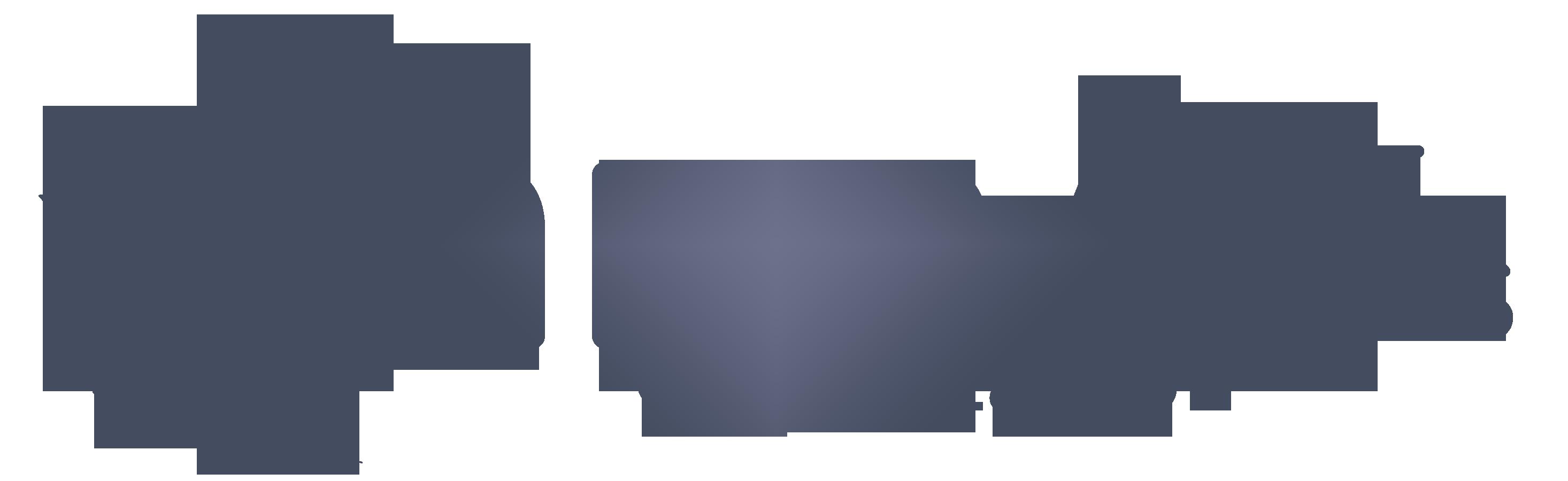 Sarmaşık Organizasyon